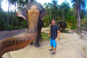 Elephant takes Amazing Selfie